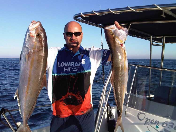 pescando serviolas a jigging