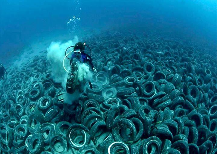 denuncia del basureo mundial