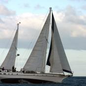 navegando con velero