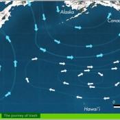 basurero mundial en el mar