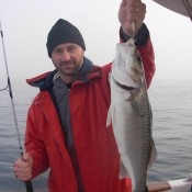pesca lubina a jigging