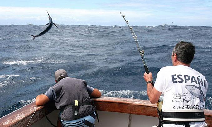 pesca deportiva altura